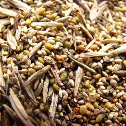 Семена и травосмеси